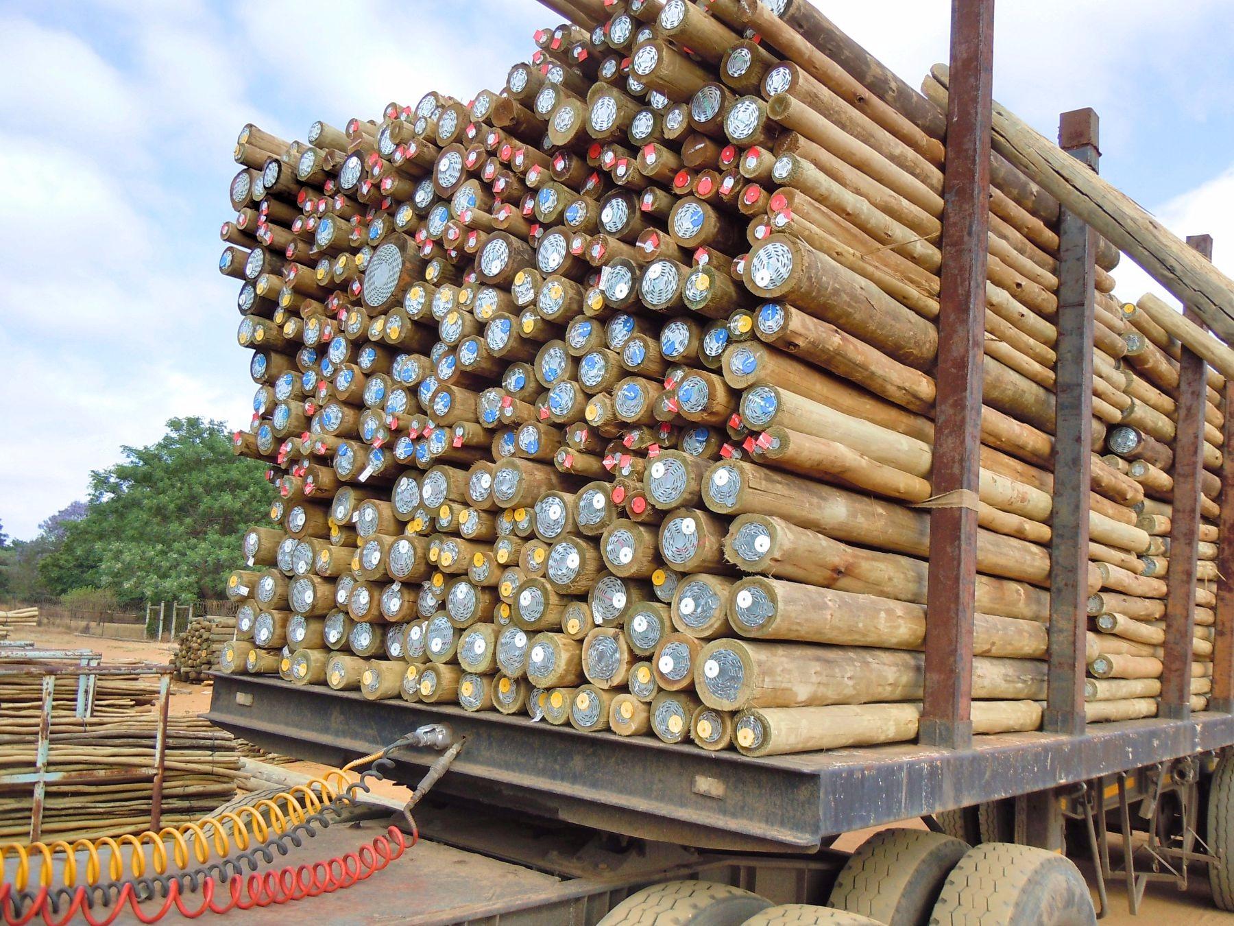 Lynnridge Timbers