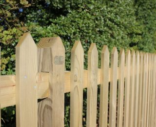 Treated Picket Fencing
